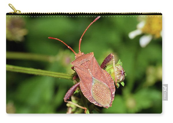 Leaf Footed Bug Carry-all Pouch