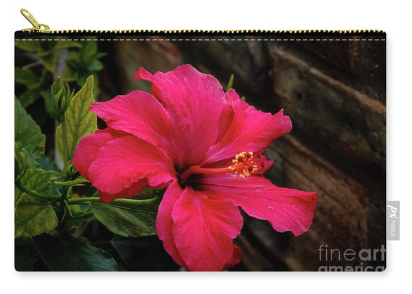 A Beautiful Red Hibiscus Carry-all Pouch