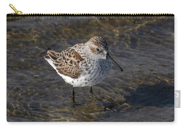 A Dunlin Carry-all Pouch