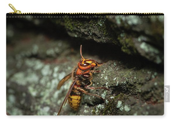 A European Hornet Sitting On A Tree Carry-all Pouch