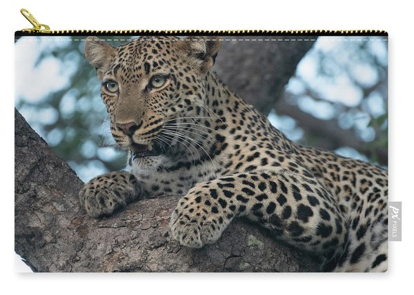 A Focused Leopard Carry-all Pouch