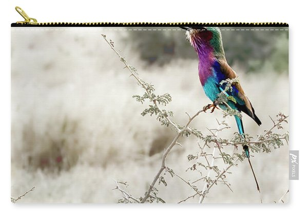 A Lilac Breasted Roller Sings, Desaturated Carry-all Pouch