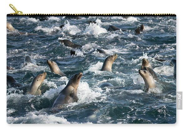 A Raft Of Sea Lions Carry-all Pouch