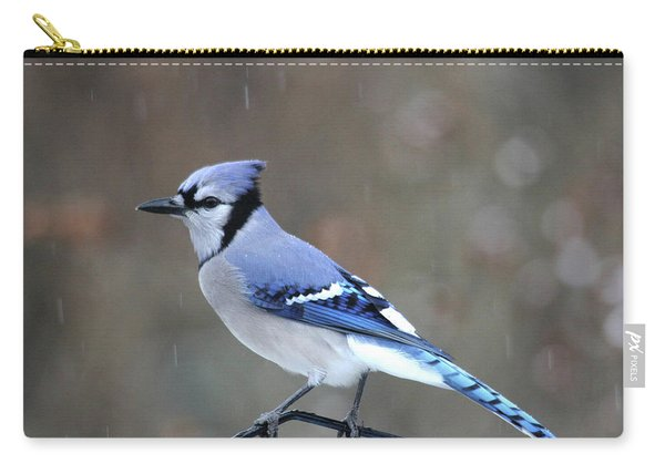 A Snowy Day With Blue Jay Carry-all Pouch