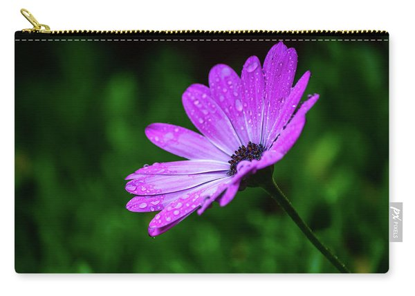 African Daisy II Carry-all Pouch