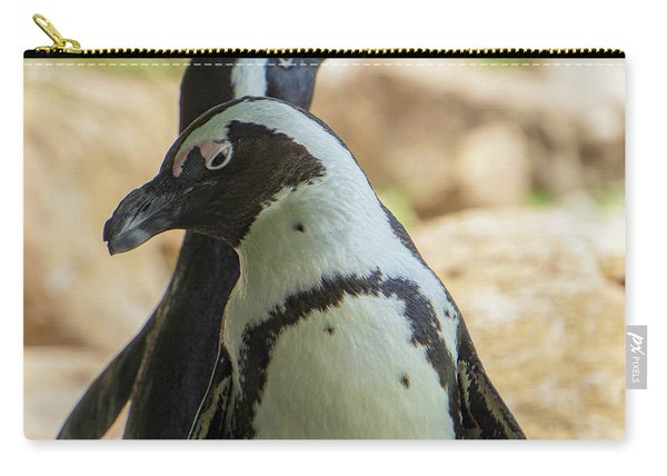 African Penguins Posing Carry-all Pouch