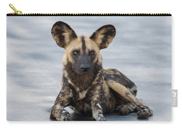 African Wild Dog Resting On A Road Carry-all Pouch