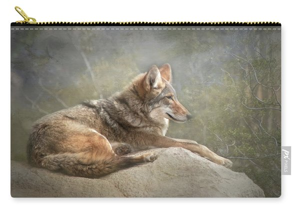 Afternoon Repose Carry-all Pouch