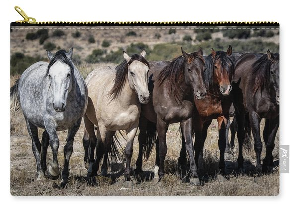 All In A Row Carry-all Pouch