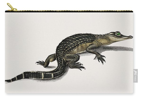 Alligator  Alligator Incius Illustrated By Charles Dessalines D' Orbigny  1806-1876  Carry-all Pouch