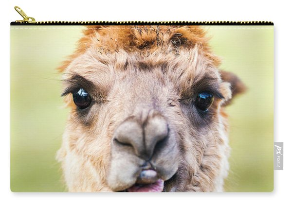 Carry-all Pouch featuring the photograph Alpaca by Rob D Imagery