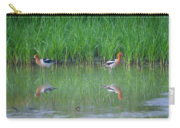 American Avocet Pair Carry-all Pouch