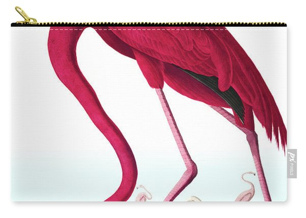 American Flamingo, Phoenicopterus Ruber By Audubon Carry-all Pouch