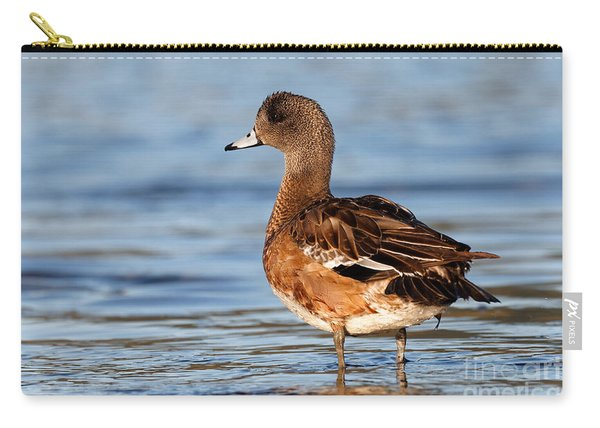 American Wigeon Standing Alert Carry-all Pouch