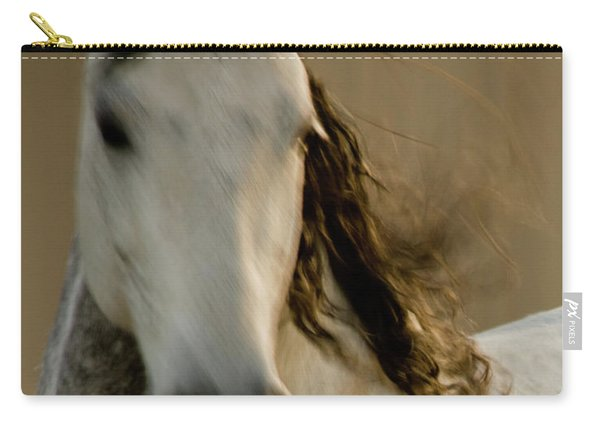 Carry-all Pouch featuring the photograph Americano 1 by Catherine Sobredo