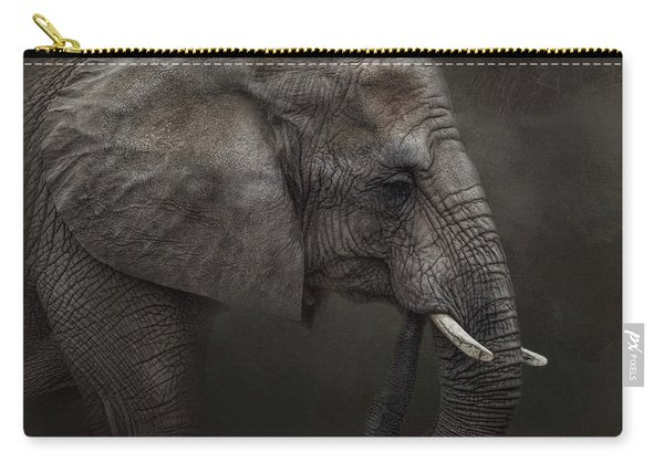 Ancient Wisdom Carry-all Pouch