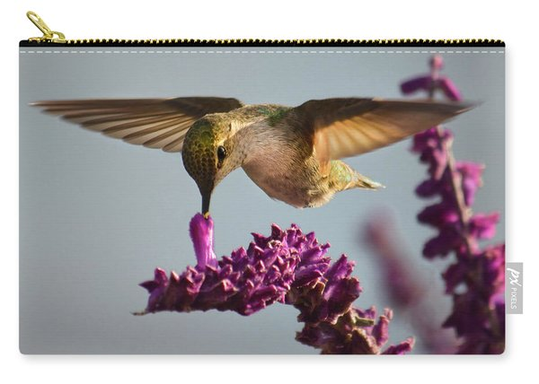 Anna's Hummingbird Sipping Nectar From Salvia Flower Carry-all Pouch