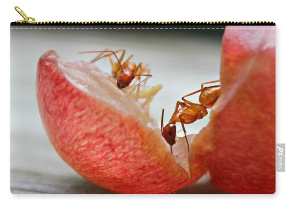 Carry-all Pouch featuring the photograph Ants by Candice Trimble