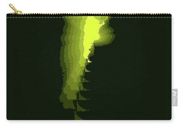 Argentina Radiant Map 2 Carry-all Pouch