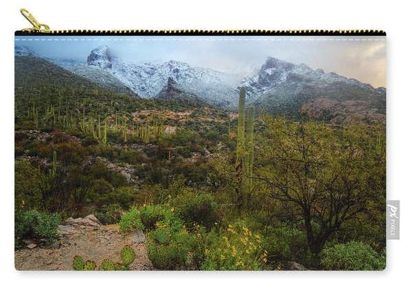 Arizona Winter Light Carry-all Pouch