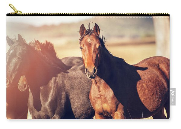 Australian Horses In The Paddock Carry-all Pouch