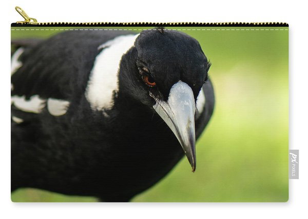 Australian Magpie Outdoors Carry-all Pouch