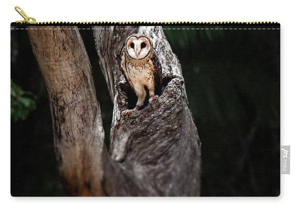 Carry-all Pouch featuring the photograph Australian Masked Owl by Rob D Imagery