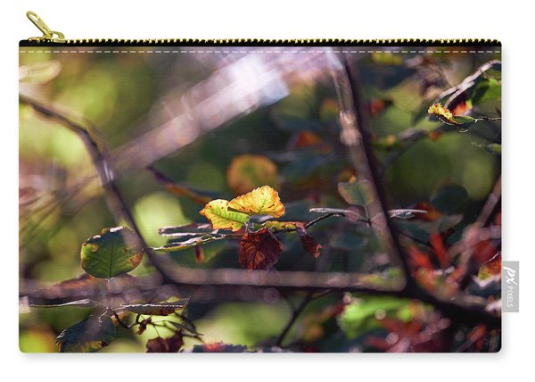 Carry-all Pouch featuring the photograph Autumn Beginnings by Whitney Goodey