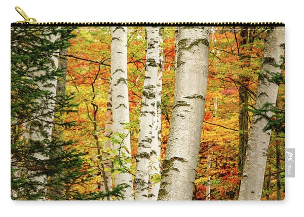 Carry-all Pouch featuring the photograph Autumn Birch by Jeff Sinon