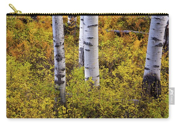 Carry-all Pouch featuring the photograph Autumn Contrasts by John De Bord