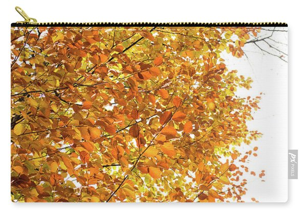 Autumn Explosion 2 Carry-all Pouch