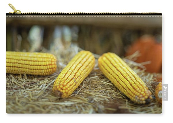 Autumn Scene Panorama Carry-all Pouch