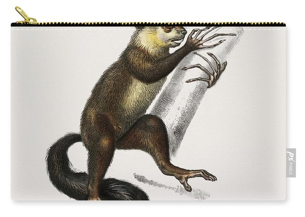 Aye-aye  Cheiromys Madagascariensis  Illustrated By Charles Dessalines D' Orbigny  1806-1876  Carry-all Pouch