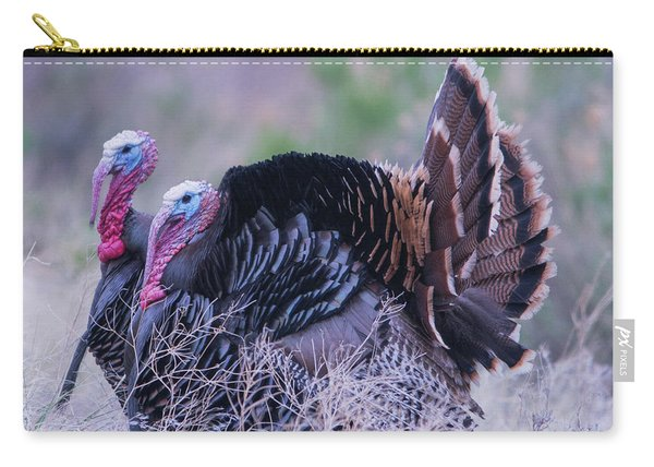 Carry-all Pouch featuring the photograph B11 by Joshua Able's Wildlife
