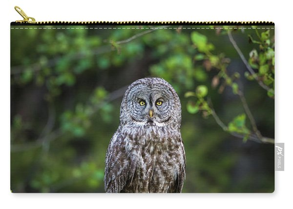 Carry-all Pouch featuring the photograph B16 by Joshua Able's Wildlife