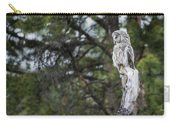 Carry-all Pouch featuring the photograph B17 by Joshua Able's Wildlife