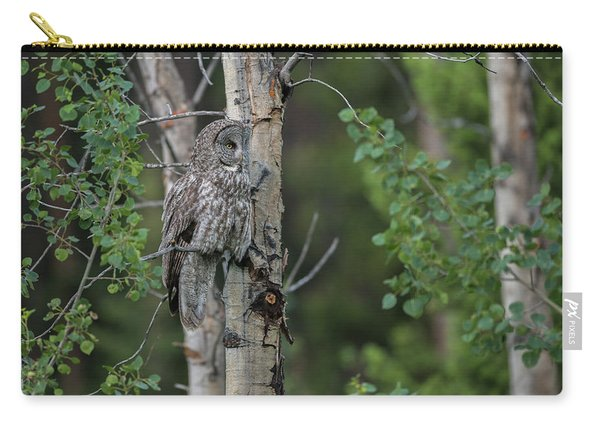 Carry-all Pouch featuring the photograph B18 by Joshua Able's Wildlife