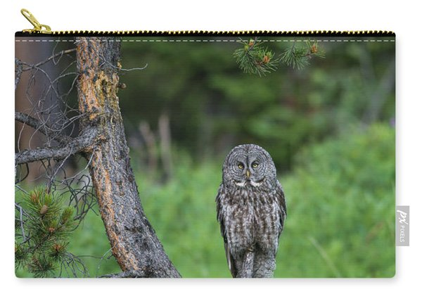 Carry-all Pouch featuring the photograph B20 by Joshua Able's Wildlife