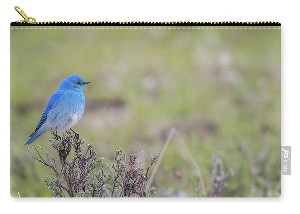 Carry-all Pouch featuring the photograph B23 by Joshua Able's Wildlife