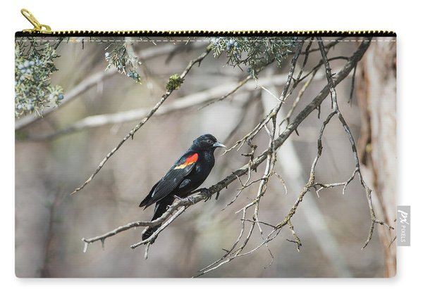 Carry-all Pouch featuring the photograph B26 by Joshua Able's Wildlife