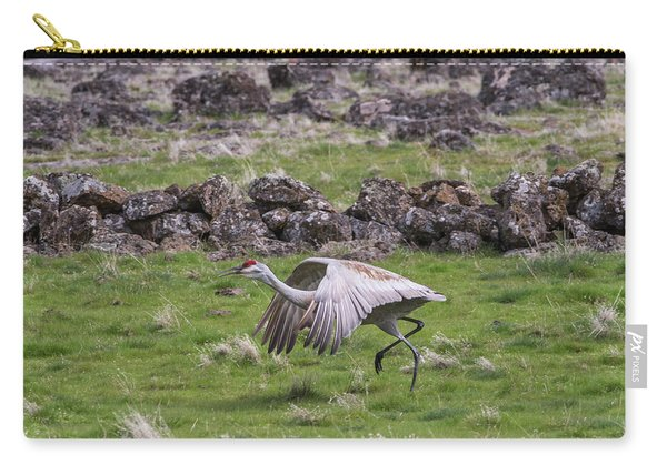 Carry-all Pouch featuring the photograph B27 by Joshua Able's Wildlife