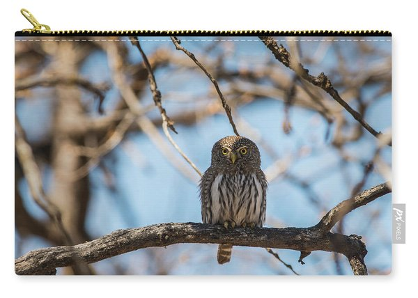 Carry-all Pouch featuring the photograph B34 by Joshua Able's Wildlife