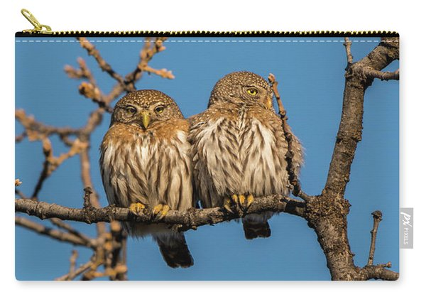 Carry-all Pouch featuring the photograph B36 by Joshua Able's Wildlife