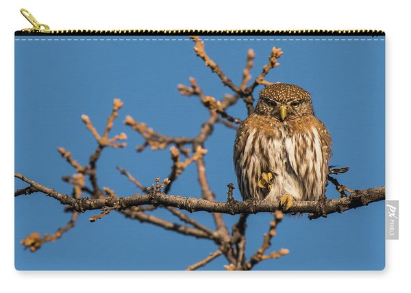 Carry-all Pouch featuring the photograph B37 by Joshua Able's Wildlife
