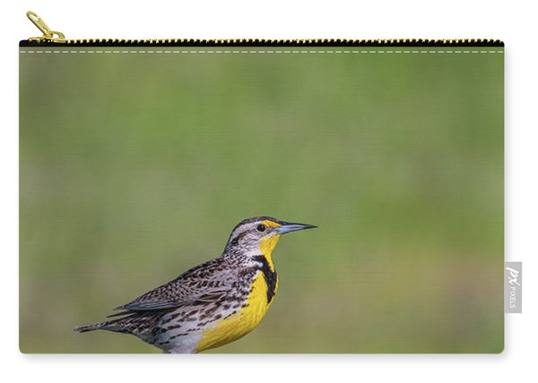 Carry-all Pouch featuring the photograph B39 by Joshua Able's Wildlife
