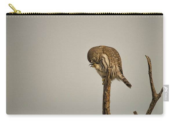 Carry-all Pouch featuring the photograph B41 by Joshua Able's Wildlife