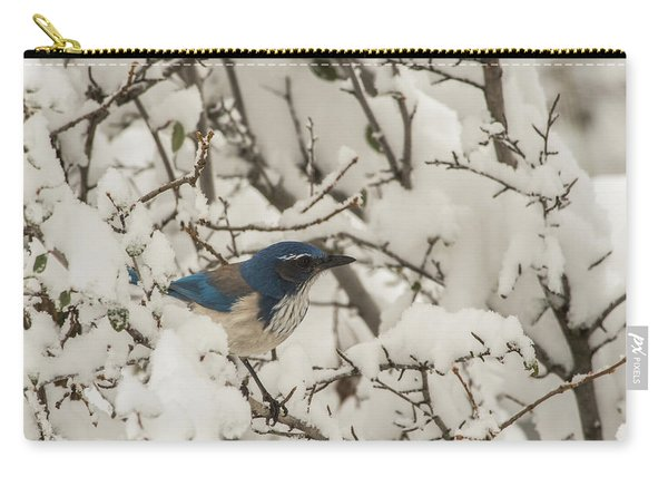 Carry-all Pouch featuring the photograph B44 by Joshua Able's Wildlife