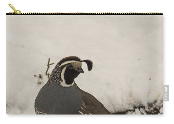 Carry-all Pouch featuring the photograph B45 by Joshua Able's Wildlife