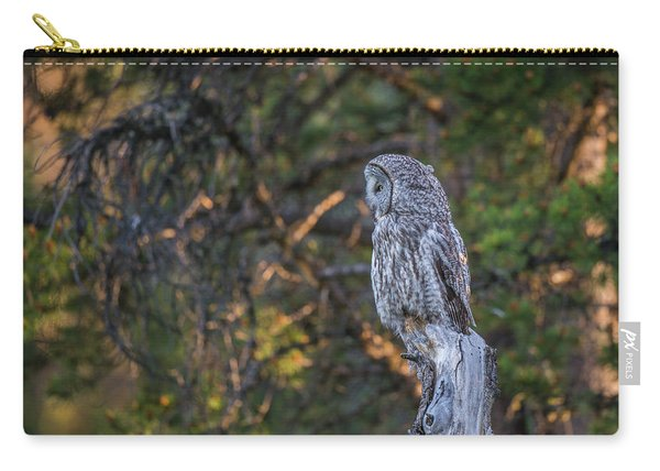 Carry-all Pouch featuring the photograph B46 by Joshua Able's Wildlife