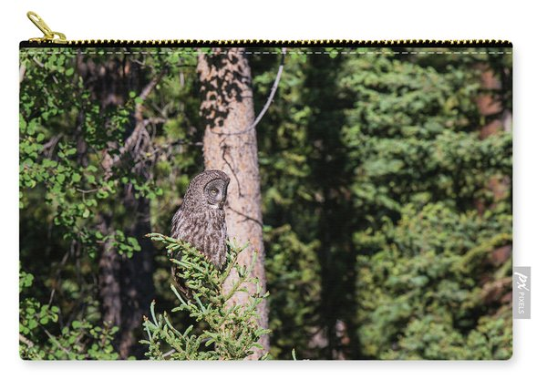 Carry-all Pouch featuring the photograph B50 by Joshua Able's Wildlife